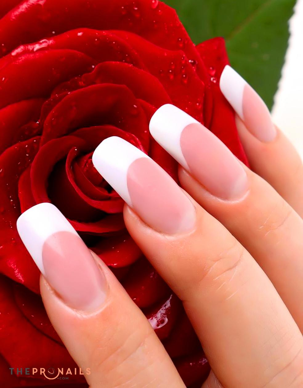 Thepronails are you considering having a full set of nails but have yet to know what is best suited for you we would like to recommend the acrylic for many reason solutioingenieria Image collections