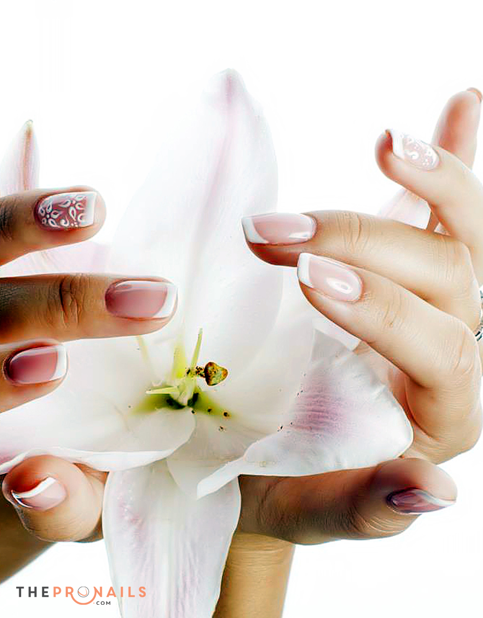Signature Manicure Treatment Is Formulated With 100 Natural Active Ingredients These Self Activating Keratin Rich Are Loaded Intensive Antiseptic